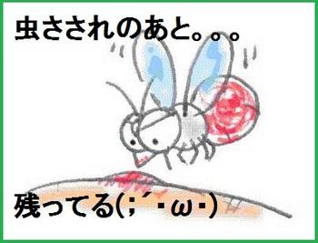 蚊.jpeg